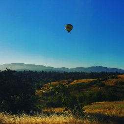 Things to do in Napa Other Than Wine Tasting